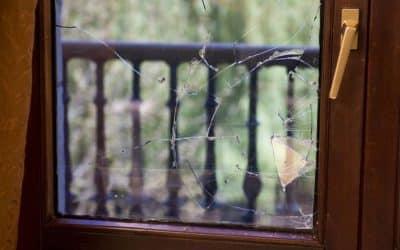 Reparación de una ventana rota en un marco de madera